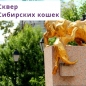 Первая городская выставка-фестиваль домашних и садовых растений «Мой город – сад»